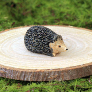 Hedgehog - Teeny Tiny