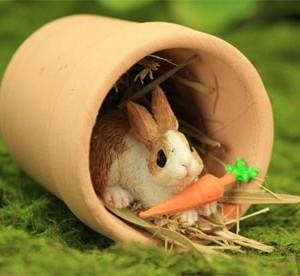 Hiding Bunny with Carrot