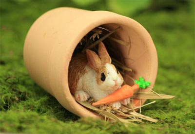 Hiding Bunny with Carrot