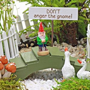 Don't Anger The Gnome Collection Fairy Garden Accessory