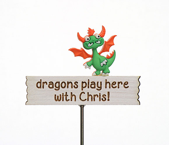 Dragons play here with ...., personalised sign
