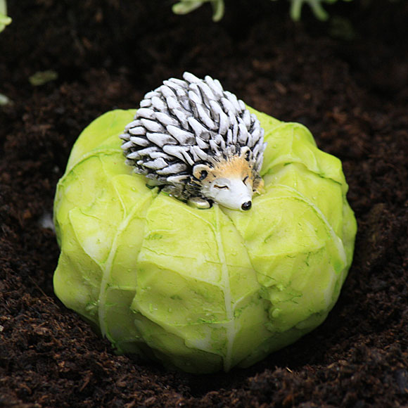 Cabbage with Sleeping Hedgehog - Fairy Garden Accessory