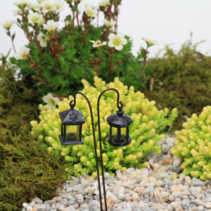 Black Carriage Lantern & Hook- Square & Round