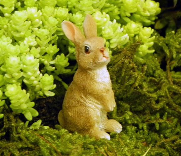 bunny family fairy garden accessory miniature animal