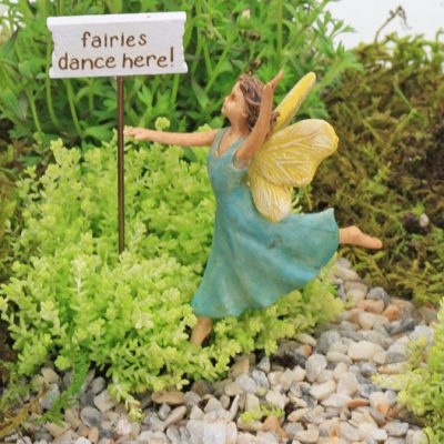 fairy gardens. Popular Fairy Garden Categories Gardens