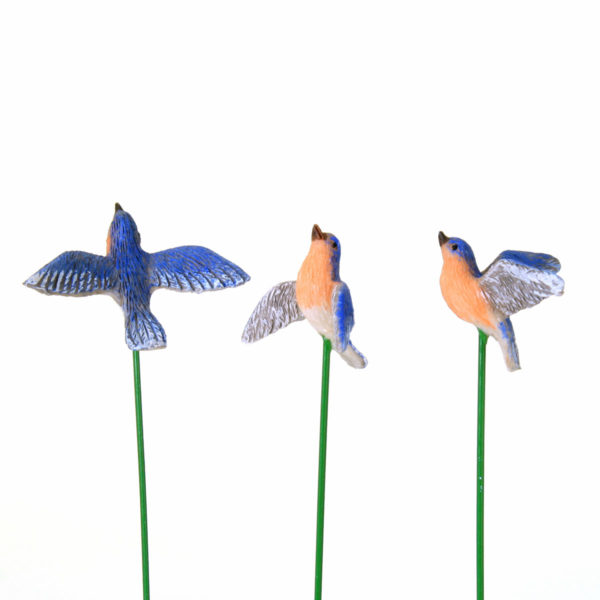Flying Bluebirds