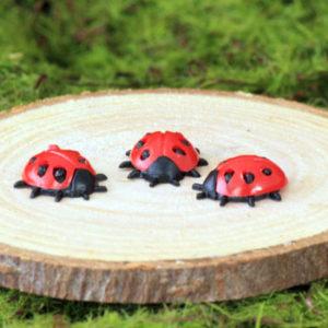 Ladybird - set of 3