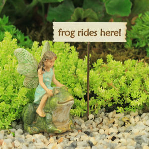 Frog Rides Fairy & Sign