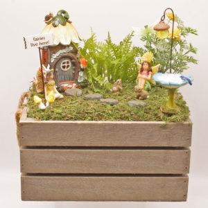Boxed Fairy Garden Kit
