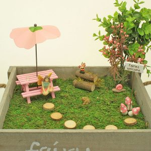 Fairy Garden Boxed Kit - pink Collection