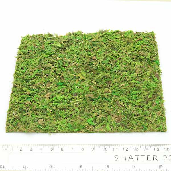 Natural Preserved Moss Sheet Fairy Garden Moss Fairy Accessory