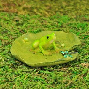 Lily Pad and Frog