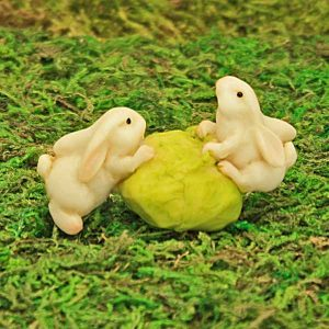 Cabbage & Bunny Rabbits