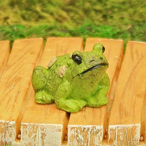 Warty Toad