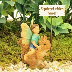 Squirrel Rides