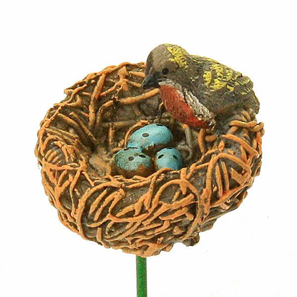 Birds Nest & Bird