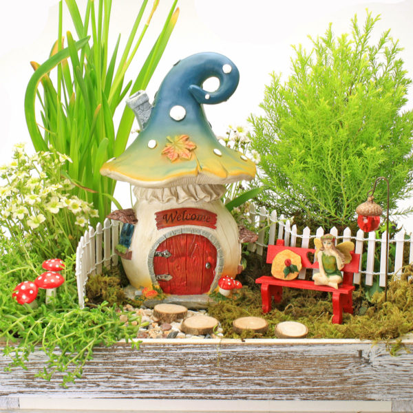 Gift Boxed Fairy Garden Set