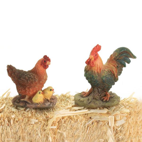 Cockerel Hen & chicks
