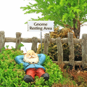 Gnome Resting